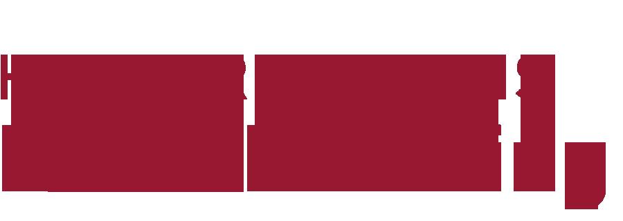 Logoschriftzug der Praxis Dr. Schimming